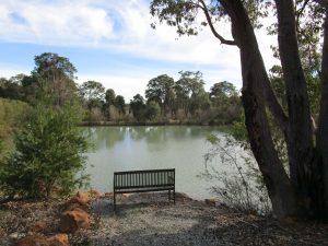 Jhana Grove dam