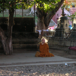 Ajahn Brahm meditating in Bodh Gaya
