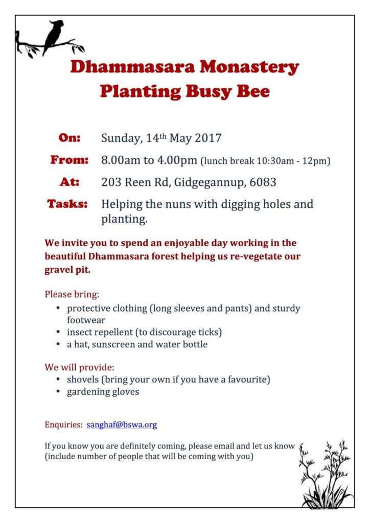 Planting Busy Bee