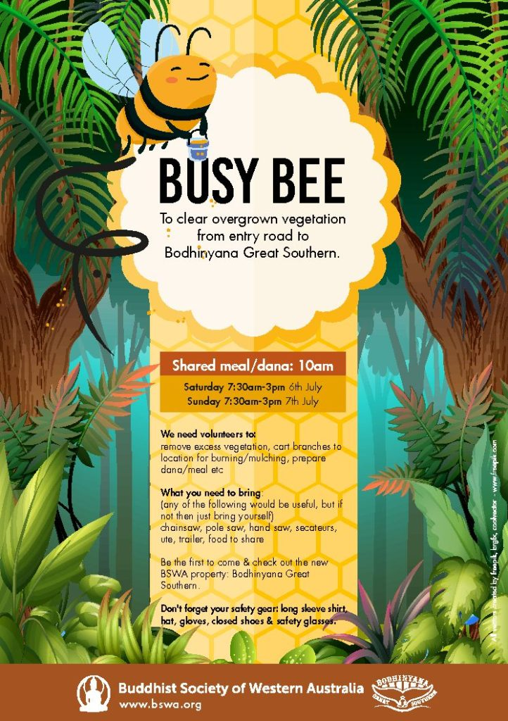 Busy Bee – BGSM